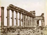 Colonnato e Arco di trionfo, Palmira