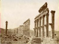 Grande colonnato, Palmira